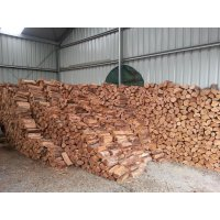 Eucalyptus Timber (Firewood By-Product)